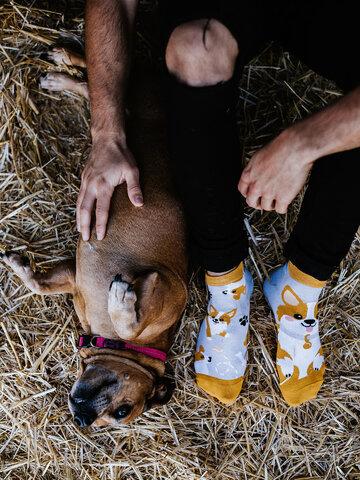 Suchen Sie ein originelles und außergewöhliches Geschenk? überrascht den Beschenkten sicher Lustige Knöchelsocken Corgi-Hund