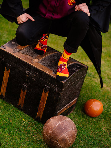 Pre dokonalý a originálny outfit Vrolijke sokken Harry Potter ™ Zwerkbal