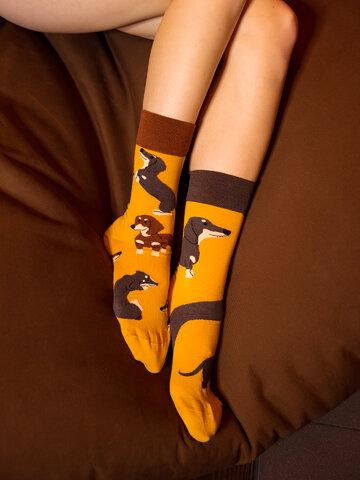 Pre dokonalý a originálny outfit Весели чорапи Дакели