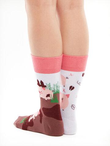 Lifestyle foto Весели чорапи Щастливи прасета
