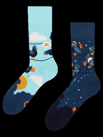 Lifestyle foto Veselé ponožky Vtipní holubi