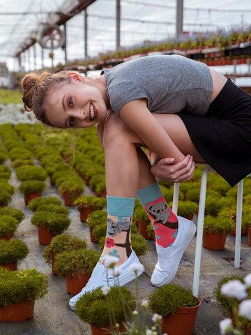 pro dokonalý a originální outfit Veselé ponožky Ospalá koala