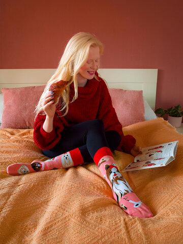 Výnimočný darček od Dedoles Vesele čarape Jorkširski terijer