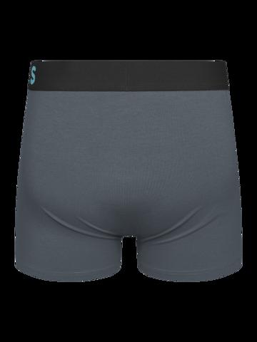Pre dokonalý a originálny outfit Grey Men's Trunks