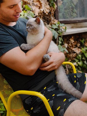 Lifestyle foto Veselé pánske boxerky Mačky