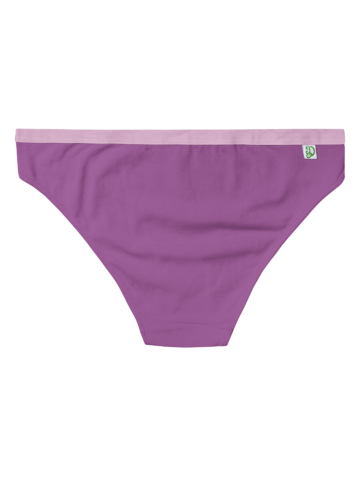 Bereiten Sie sich Freude mit diesem Dedoles-Stück Hyazinthenviolette Höschen für Frauen