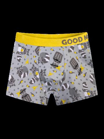 für ein vollkommenes und originelles Outfit Lustige Boxershorts für Jungen Waschbär