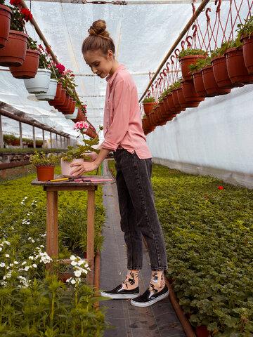 Eredeti és szokatlan ajándékot keres? a megajándékozottat garantáltan meglepi Vidám zokni Szobanövények