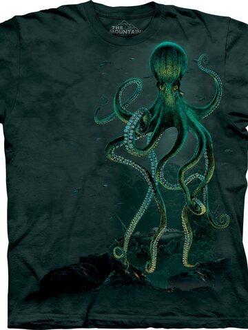 Foto Octopus Adult