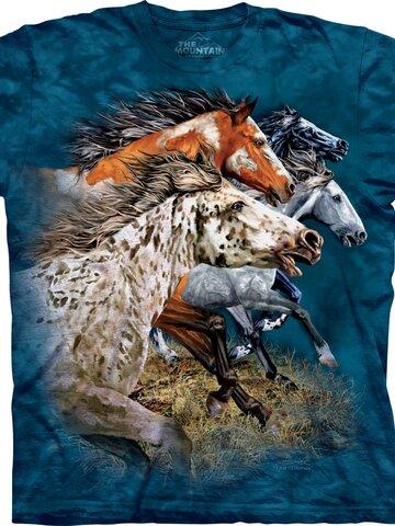 Zdjęcie lifestyle Find 13 Horses Child