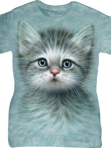 Pomysły na prezenty Blue Eyed Kitten