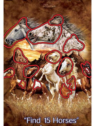 Zľava Tričko Nájdi 15 koní