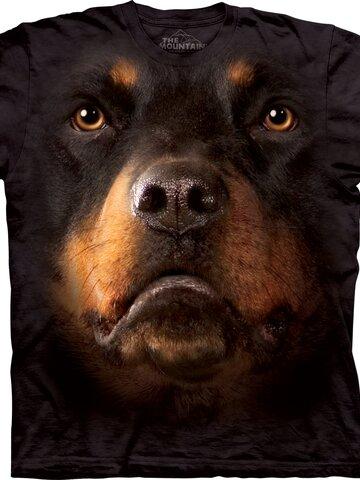 Zdjęcie lifestyle Rottweiler Face Adult