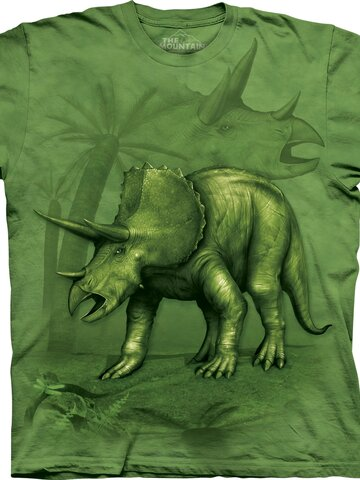 Lifestyle fotó Triceratops Child