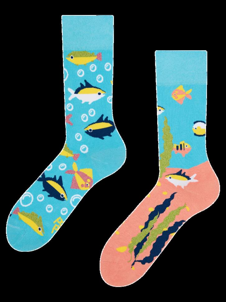 Bereiten Sie sich Freude mit diesem Dedoles-Stück Lustige Socken Aquarium