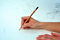 Geschenktipp Pflanzen Sie den Bleistift ein - Thymian