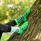 Lifestyle photo Good Mood Socks Plant a tree