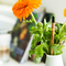 Zdjęcie lifestyle Plant Your Pencil – Thyme