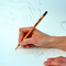 Foto Zasaď tužku -šalvěj