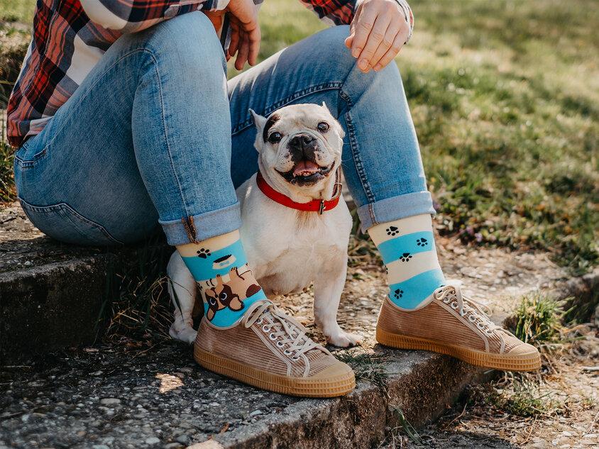 Dogs & Stripes (2)