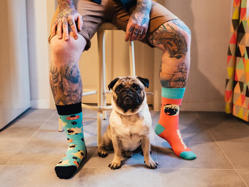 Pug Life (2)